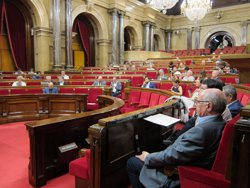 El Parlament demana al Govern i l'Estat defensar