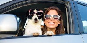Tu mascota, el amigo que cuida tu salud y te mantiene joven (GETTY)