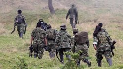 FFAA activen protocols per garantir la seguretat a les zones de concentració de les FARC (COLPRENSA)