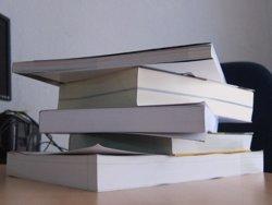 La meitat de les famílies espanyoles compra llibres de text per internet (EUROPA PRESS)