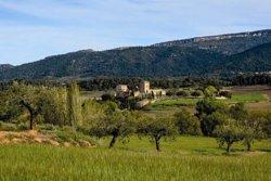 Bodegas Torres llança un vi inspirat en les muntanyes de Prades (BODEGAS TORRES)