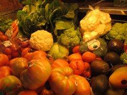 Unió de Pagesos adverteix que els preus de la fruita d'aquest any són insuficients (EUROPA PRESS)
