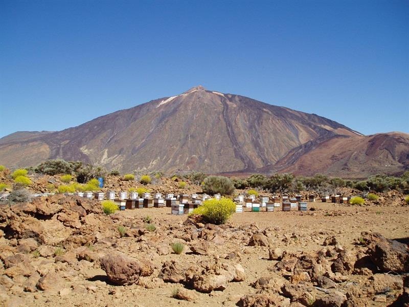 Maravillas naturales: Teide