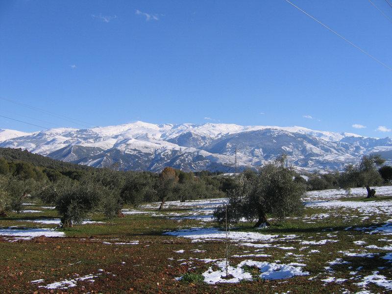 Maravillas naturales: Sierra Nevada