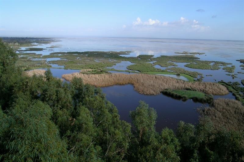 Maravillas naturales Doñana