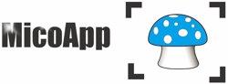 La UVic-UCC crea una app per diagnosticar i tractar intoxicacions per consum de bolets (UVIC-UCC)