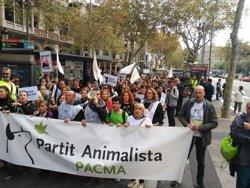 Unes 300 persones es concentren a Barcelona per la prohibició de les curses de braus (PACMA)