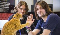 Celebra el Día Internacional del Gato con Un gato callejero llamado Bob (UNIVERSAL)