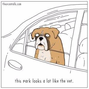 Perro: Este parque se parce mucho al veterinario