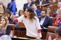 PODEMOS EXIGE ACLARAR A DIAZ SI LOS ANDALUCES PAGAN SU CAMPANA EN EL PSOE