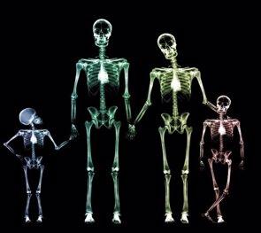 Curiosidades del cuerpo humano (GETTY)