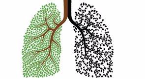 Se puede vivir con un solo pulmón pero... ¿cómo? (GETTY)